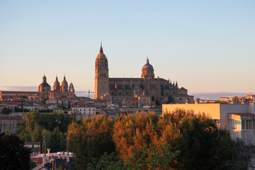 View on the center of Salamanca, Spain