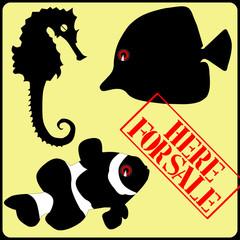 fish marine, sale sign