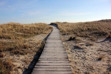Beach Boardwalk in Winter