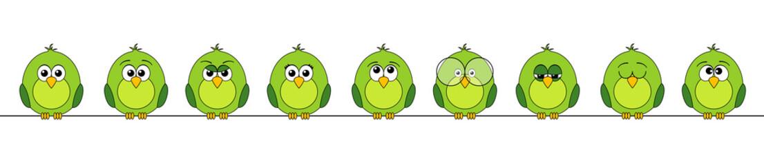 funny birds #3