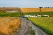 Krajobraz wiejski, stanowisko mysliwskie , ambona
