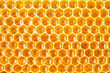 honeycomb cells natural background - 75293219