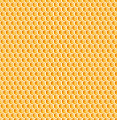 honeycomb or bee honey comb seamless texture