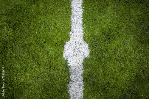 Fototapeta horizontal shot of marking on center of soccer field