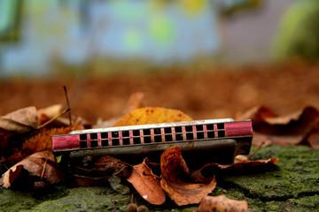 Mundharmonika im Herbst