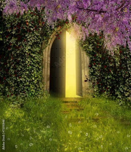 Fantasy door - 75310848