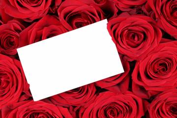 Rote Rosen zum Valentinstag oder Muttertag mit leerem Zettel mit