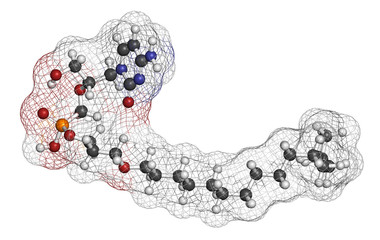 Brincidofovir antiviral drug molecule. Prodrug of cidofovir.