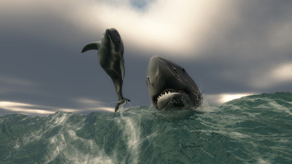 Mamifero marino