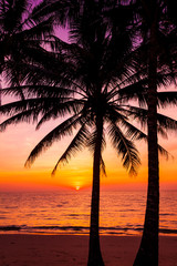 Beautiful sunset over the sea with a view at palms on the beach