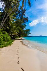 Tropical paradise.  beautiful beach