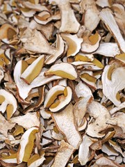 dried porcini mushrooms and dried mushrooms for sale at Mountain
