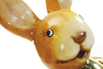 Osterhase, close-up