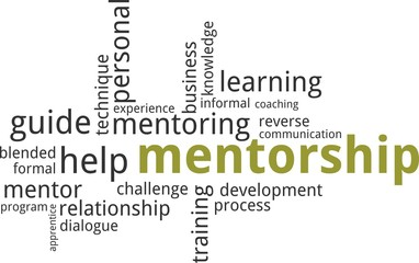 word cloud - mentorship