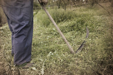 Detail of old way mowing grass with scythe