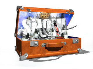 snow in the suitcase