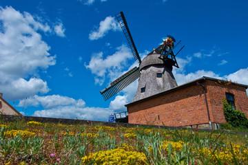 historische Windmühle, Malchow, Mecklenburg Vorpommern, Germany