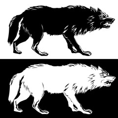 Wolf silhouette black and white. Vector illustration