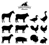 Vector Farm Animals Silhouettes Isolated on White poster