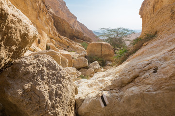 Huge stones in desert canyon.