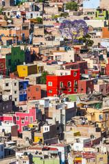 Colorful town of Guanajuato (Mexico)