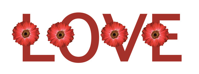 red daisy flower love letter cover design valentines background