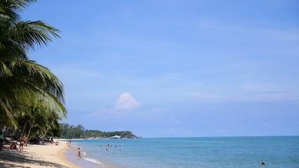 Tropical Beach with Tourists, Palm Trees and Blue Sea.