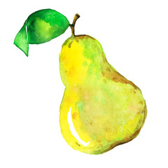 watercolor_pear