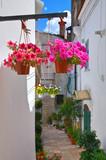 Alleyway.  Minervino Murge. Puglia. Italy. - 75362666
