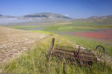 Casteluccio di Norcia, la fioritura della lenticchia. Lavorando