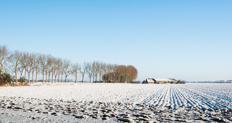 Plowed field covered with snow