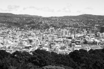 Wellington black white - New Zealand