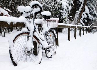 Winter in English Garden, Munich Germany