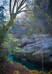 The Mostnica gorge near lake Bohinj in Slovenia.