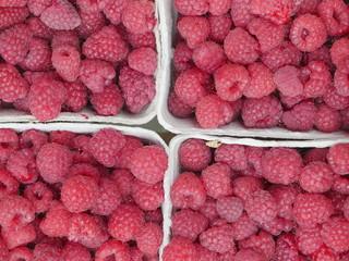 raspberry market organic