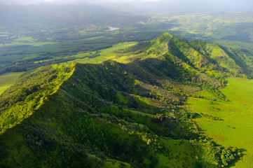 Stunning aerial view of spectacular jungles, Kauai