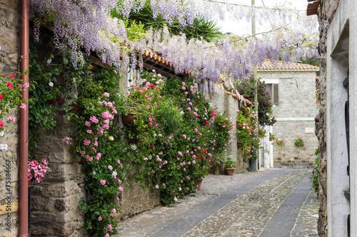 Obraz na Szkle Narrow street of flowers