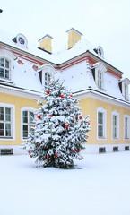 Gohliser Schlösschen zur Weihnachtszeit, Leipzig