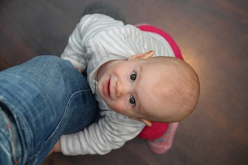 8 Monate altes Baby zieht sich am Bein der Eltern hoch