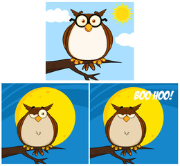 Funny Owl Cartoon Mascot Character. Collection Set