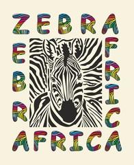 Zebra - Africa background