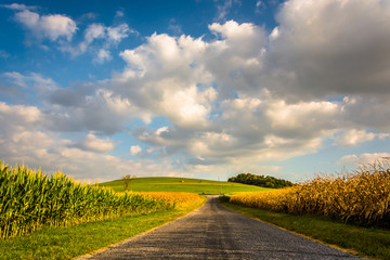 Country road and large hill, near Spring Grove, Pennsylvania.