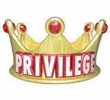 Privilege Word Gold Crown Upper Class Rich Wealthy Royalty poster