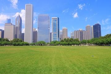 Chicago skyline and park