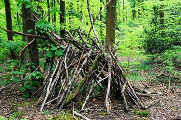Tent made from Tree Branches