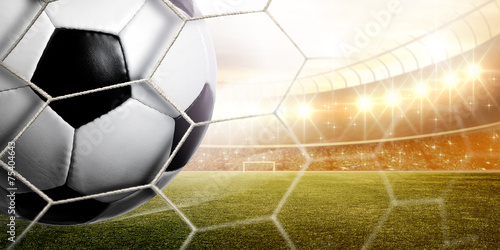 Zdjęcia na płótnie, fototapety, obrazy : Stadium Goal
