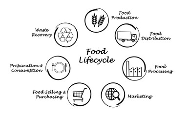 Food lifecycle