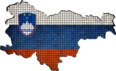 Slovenia map with flag inside