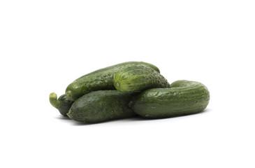 Fresh green cucumber. Photo.