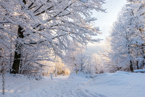 mata magnetyczna Piękna zima w polskich Górach - Beskidy